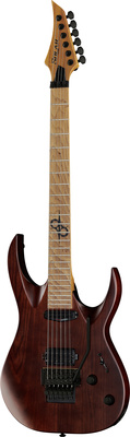 Solar Guitars AB 1.6FRNB Nat Brown